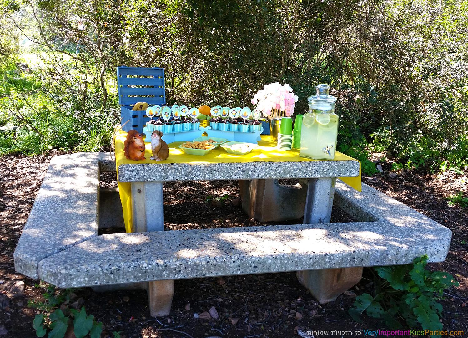 מסיבת היער של תומר - שולחן הקינוחים