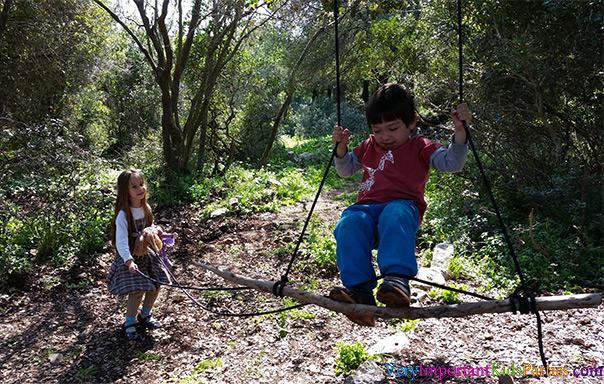 מסיבת היער של תומר - מתנדנדים