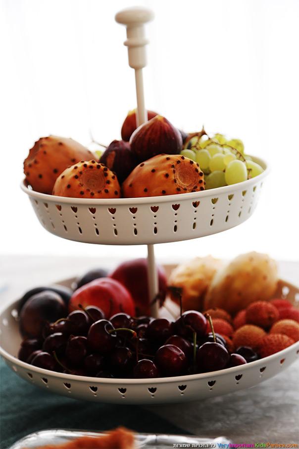מסיבת הקיץ שלי - מבחר פירות העונה