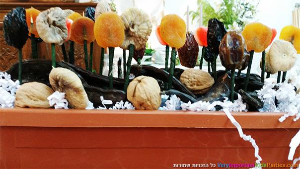 לקראת טו בשבט - אדנית מלאה פירות יבשים