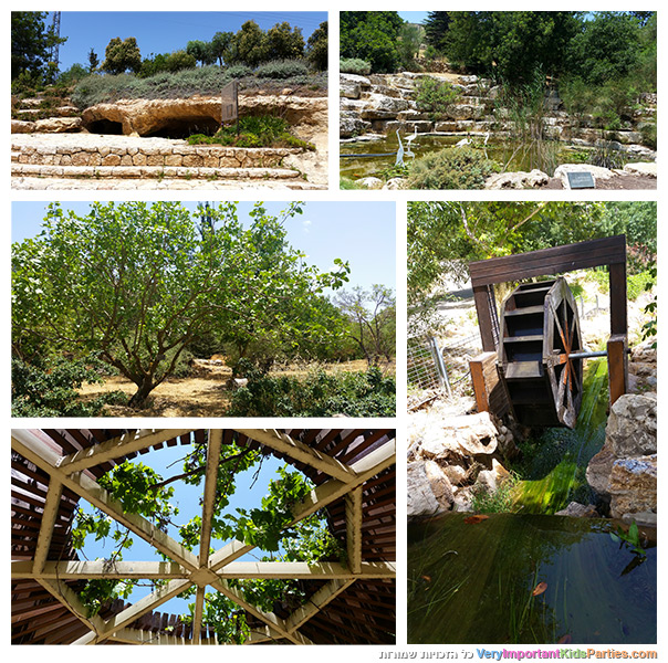 ירושלים - הגן הבוטני