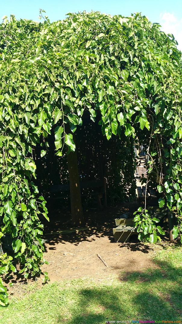 הקיץ בבוסתן עין זיוון - סוכות תותים