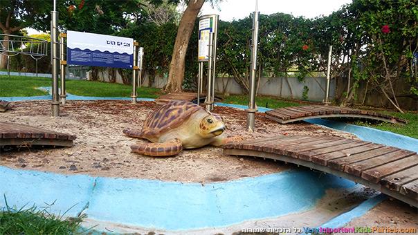 סודות הים - צבים