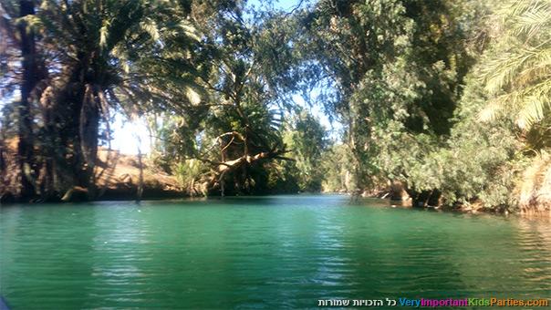 צל עץ תמר על נהר הירדן