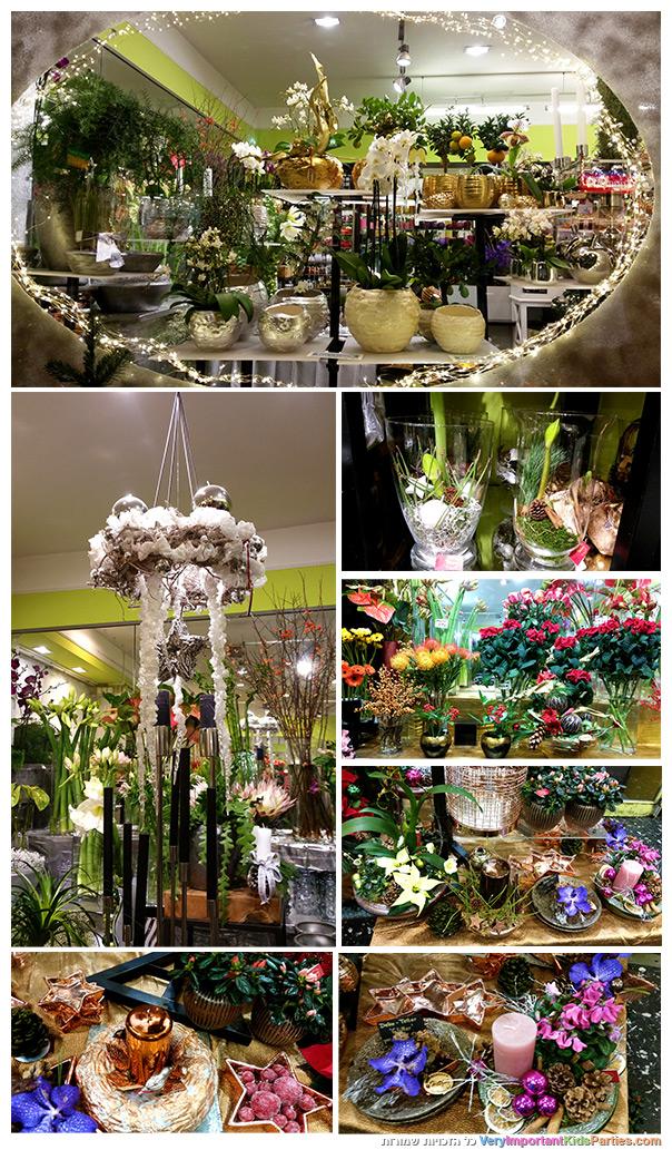 וינה בחורף - חנות פרחים