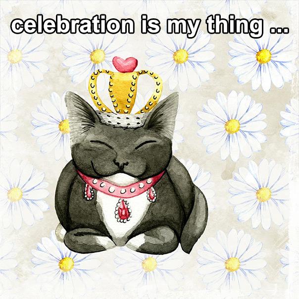 יום החתול - חגיגות